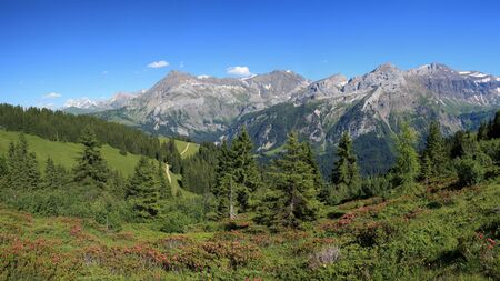 gstaad: Summer landscape near Gstaad