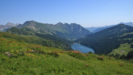 canton berne: Blue lake Arnensee and green meadows