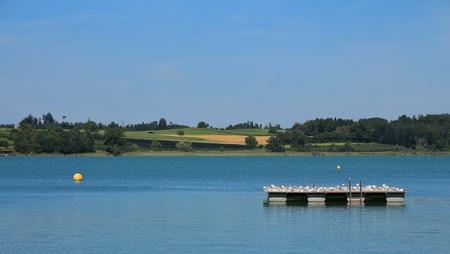 dyllic: Summer at lake Pfaeffikon