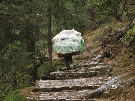 wicker work: Porter carrying a heavy load in the Everest Region
