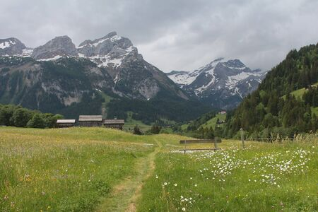 saanenland: Rainy summer day in the Swiss Alps
