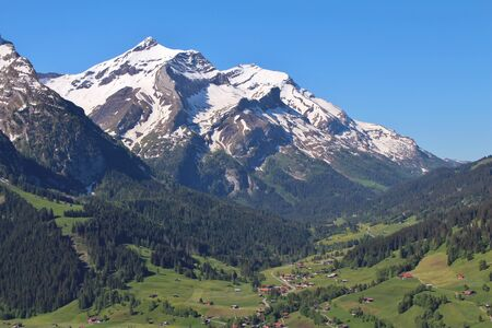 saanenland: Snow capped Mt Oldenhorn, spring scene in the Swiss Alps