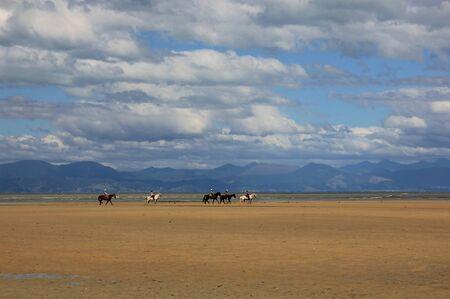tasman: Horse caravan in the Abel Tasman National Park Stock Photo
