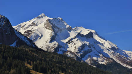 saanenland: Majestic Mt Oldenhorn in spring