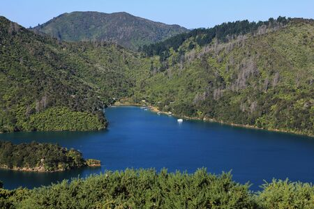 australasia: Scene on the Queen Charlotte Track, trekking route in New Zealand. Stock Photo