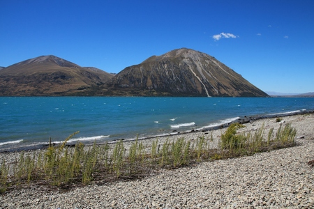 mackenzie: Beautiful landscape on the South Island. Summer scene in New Zealand. Stock Photo