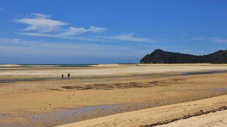 inlet bay: Bay in the Abel Tasman National Park, New Zealand. Low tide in the Awaroa Inlet.