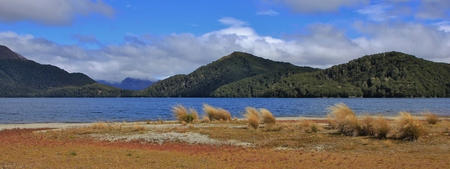 national forests: Landscape in the Fjordland National Park, New Zealand. Tussock, lake and hills covered by forests.