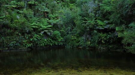aotearoa: Scene in the Abel Tasman National Park, New Zealand. Stock Photo