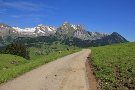 toggenburg: Scene in the Toggenburg valley, Switzerland. Nature background. Stock Photo