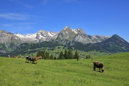 toggenburg: Spring scene in the Toggenburg valley, Switzerland. Stock Photo