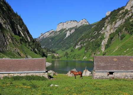sheds: Sheds and horse at lake Fahlensee. Mountains of the Alpstein Range, Appenzell Canton. Summer scene in the Swiss Alps. Stock Photo