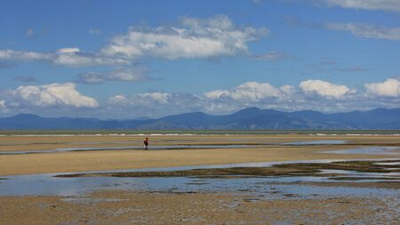 the south island: Sandy Marahau beach. Landscape on the South Island of New Zealand. Stock Photo