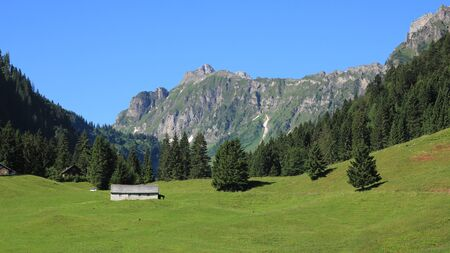 glarus: Rural landscape in Glarus Canton, Swiss Alps. Green meadow, forest and mountains in the Oberseetal.