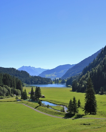 glarus: Landscape in Glarus Canton. Green meadow, forest snd lake Obersee. Morning scene.