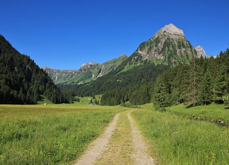 glarus: Summer scene in the Swiss Alps. Mt Brunnelistock. Trail leading trough the Oberseetal valley. Nature background.