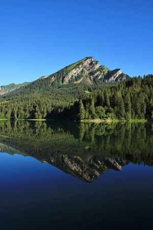 glarus: Summer scene in the Swiss Alps. Mountain and fir forest reflecting in lake Obersee, Glarus Canton.