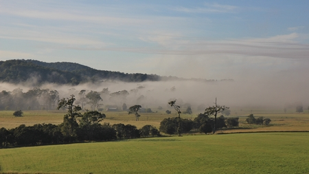telegraph hill: Autumn scene near Wauchope, New South Wales. Morning fog over rural landscape.