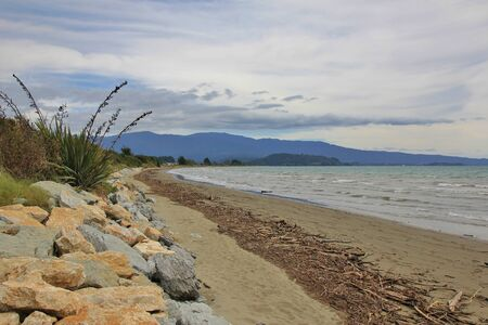 australasia: Summer scene at Pohara Beach, New Zealand. Cloudy day. Driftwood washed ashore after heavy rainfall.