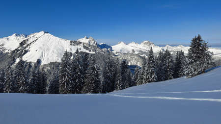 Winter landscape in the Swiss Alps. View from Mt Wispile.