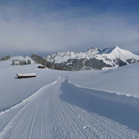 saanenland: Idyllic winter landscape in Gstaad. Mt Lauenenhorn. Winter hiking trail on top of Mt Wispile.