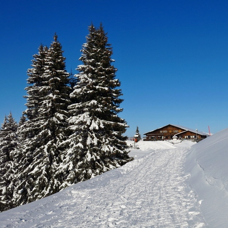 Winter scene on top of Mt Wispile, Gstaad. Snow covered trees and timber chalet. Summit restaurant.
