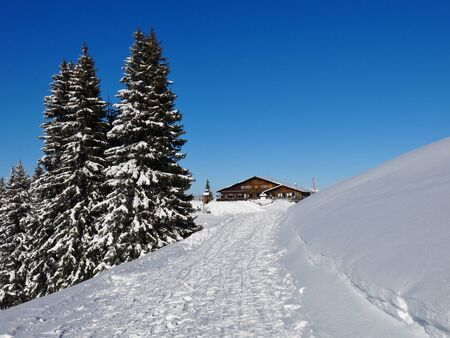 gstaad: Snow covered firs and timber chalet