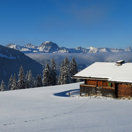 wintery: Wintery landscape in the Swiss Alps. Scene on Mt Wispile, Gstaad. Traditional old timber hut. Typical archtecture in the Saanenland valley.