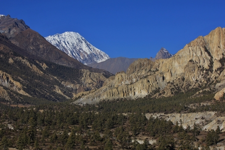 Scenery near Manang, Annapurna Conservation Area. Forest, limestone formations and snow capped mount Tilicho Peak.
