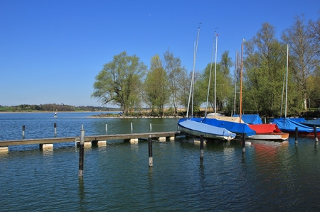Spring morning in Auslikon. Fishing boats and old tree on the shore of lake Pfaffikon.