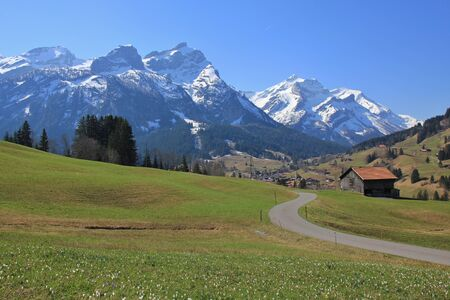 Springtime in Gsteig bei Gstaad. Snow capped mountains Schlauchhorn and Oldenhorn. Green meadow with flowers. Stock Photo