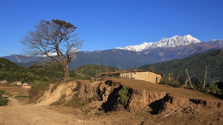 Scene on the way to Ghale Gaun. Tree, shed and snow capped Annapurna range. Stock Photo