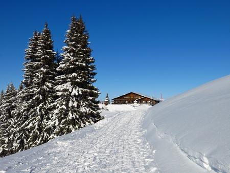 Summit of mount Wispile.