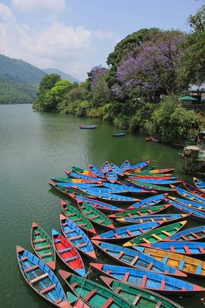 Spring scene at Fewa lake, Pokhara.