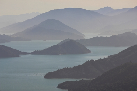 Unique landscape in  New Zealand. Scene in the Marlborough Sounds.