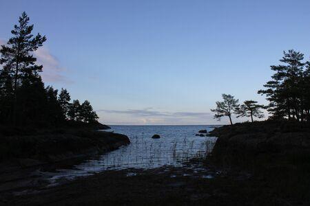 Trees and small bay at the shore of Lake Vanern. Standard-Bild