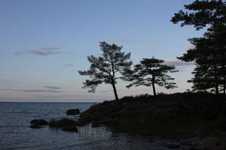 Evening scene in Vita Sannar, Sweden.