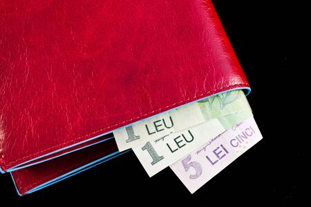 leu: Italian leather wallet with Romanian money, useful for concepts