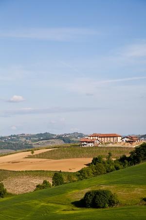 Landscape of Monferrato area in Piedmont region - Italy photo