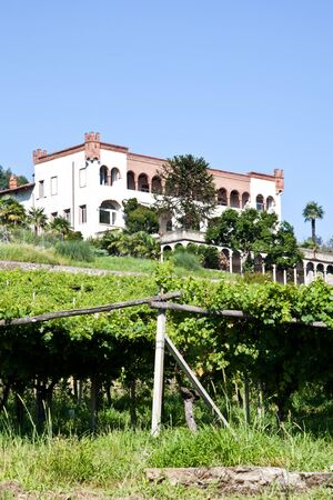 lambrusco: Tuscany, Italy. Italian luxury villa in the country, close to a Lambrusco vineyard