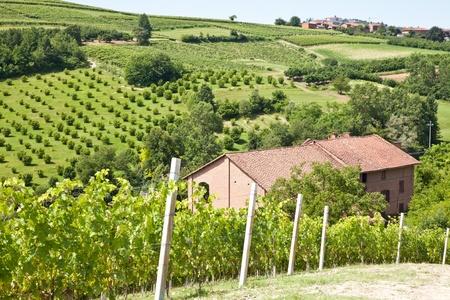 Charming Italian villa in Monferrato area (Piemonte region, north Italy) during spring season photo