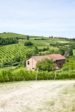 Charming Italian villa in Monferrato area (Piemonte region, north Italy) during spring season Stock Photo - 13460717