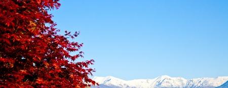 Italian Piemonte Alps on background; copy space photo