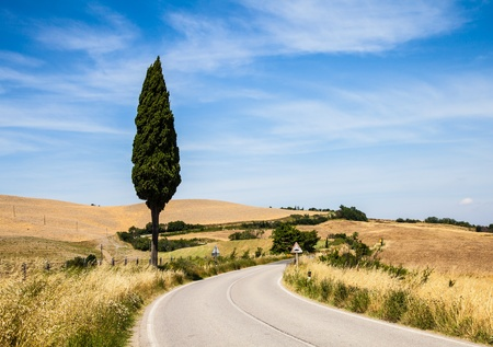Italy, Tuscany; a road in the middle of the country, close to Asciano photo