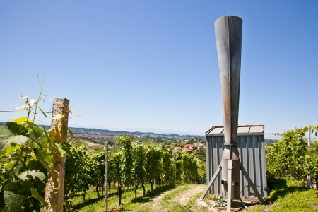 Hail cannon in Italian vineyard, Monferrato and Langhe area, Piemonte region. photo