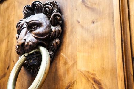 doorknocker: Lion head knocker on an old wooden door in Tuscany - Italy