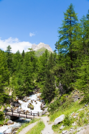 bardonecchia: Bardonecchia area, Piemonte Region, Italian Alps. Bridge on the river in Alpine forest. Stock Photo