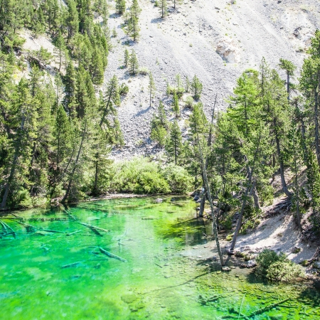 bardonecchia: Bardonecchia, Italy. The Green Lake, Alpine lake with fluo color due to a local seaweed
