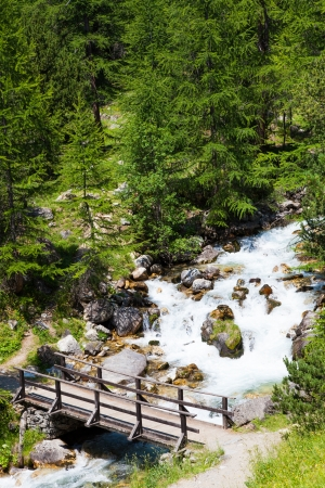 bardonecchia: Bardonecchia area, Piemonte Region, Italian Alps. Bridge on the river in Alpine forest. Stock Photo