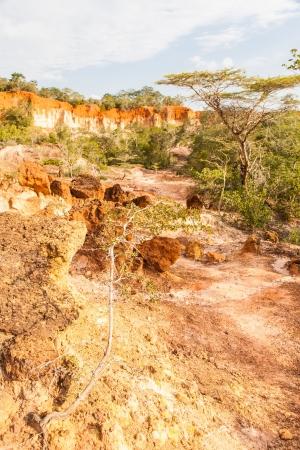 Wonderful orange colors at sunset in Marafa Canyon - also said The Hell's Kitchen. Malindi region, Kenya Stock Photo - 19717020